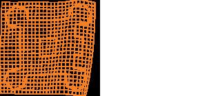csw logo w - foto|video|mark - Fotograf Starogard Gdański